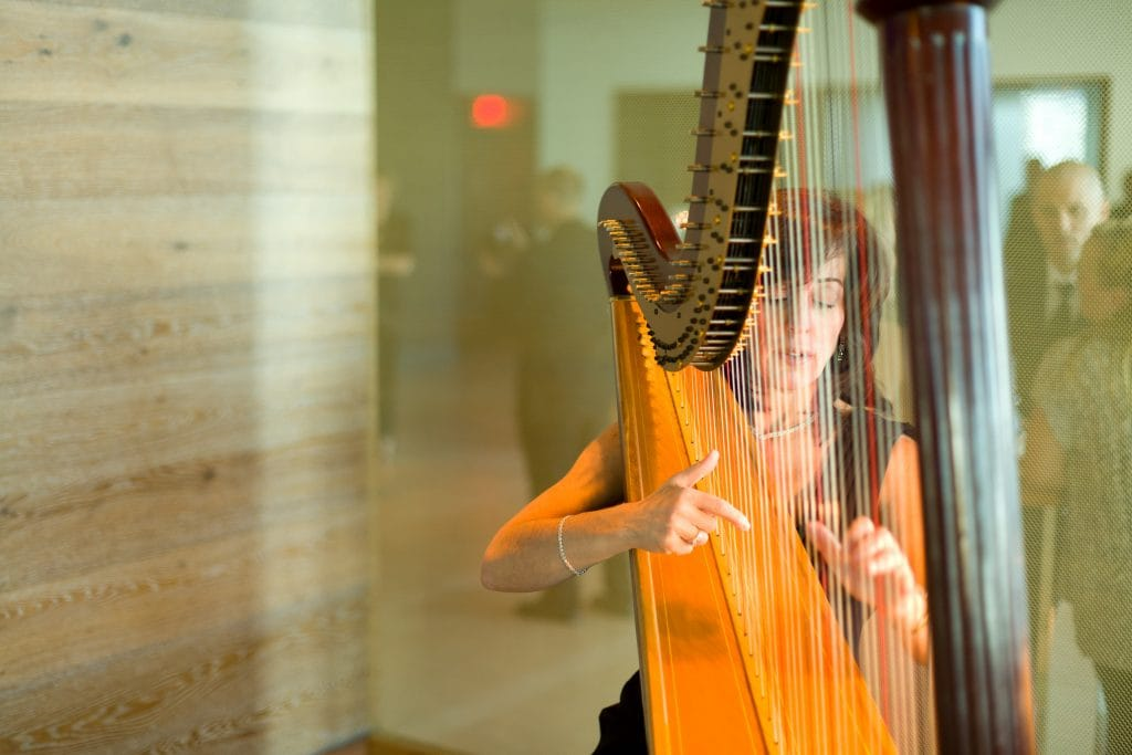 Harpist 1024x683 - Details and Decoration