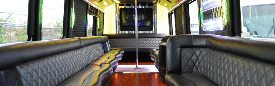 31 Pax Party Bus   Google Drive 960x300 c - Buster