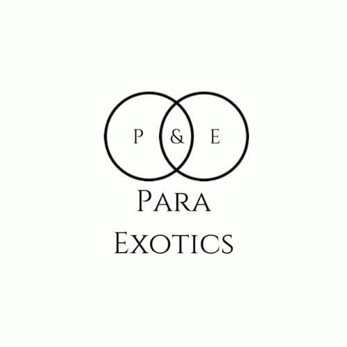 Para Exotics Logo - Partners