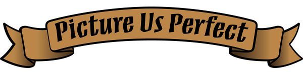 picture us perfect logo e1501864984949 - Partners